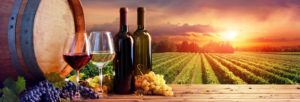 Bons vins